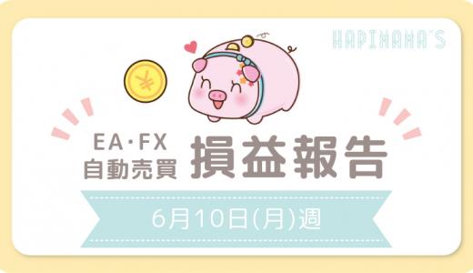 【6/10週】主婦がほったらかし運用で8万円のお小遣いを稼ぐことができました!