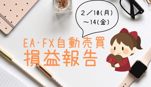 【2月第二週目】EA・FX自動売買で10万円稼ぐことができました!